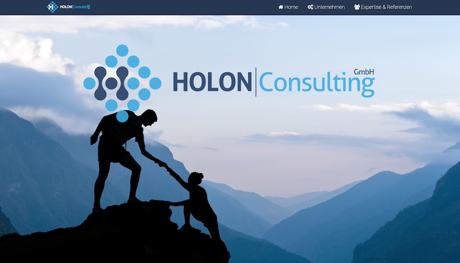 Holon Consulting Website